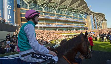 The Great Frankel